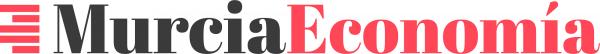 Lee más sobre el artículo La app murciana para empresarios 'Neting' alcanza los 1.000 usuarios